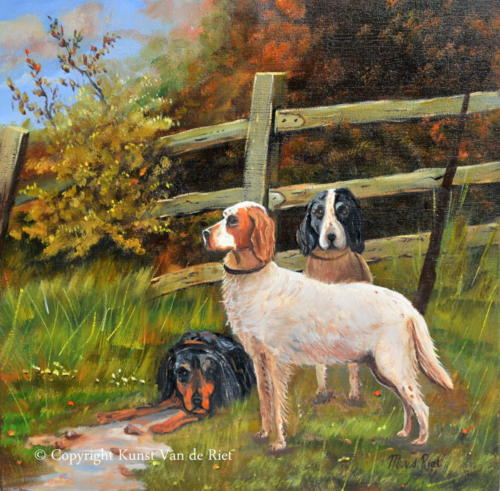 Three dogs at fence